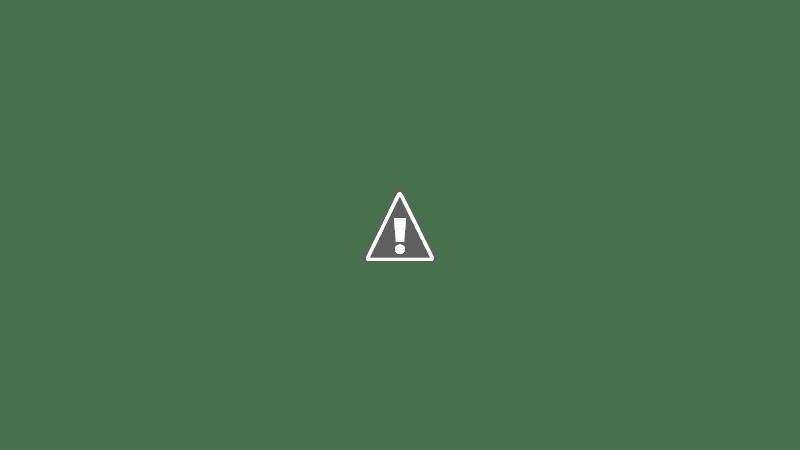 Roast Duck Bao Buns