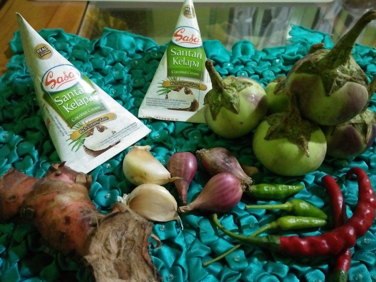 Sasa Santan Kelapa, Inovasi Baru Dalam Dunia Masakan