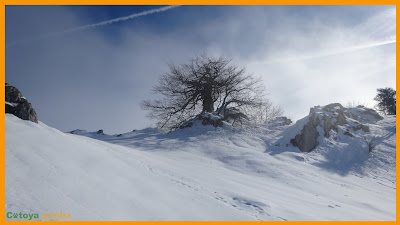 Paisaje nevado en la Campa Gües