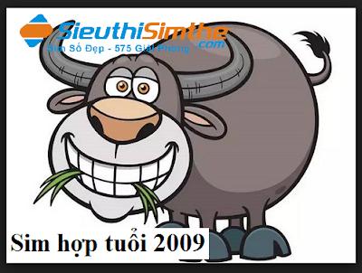 Sim hợp tuổi 2009