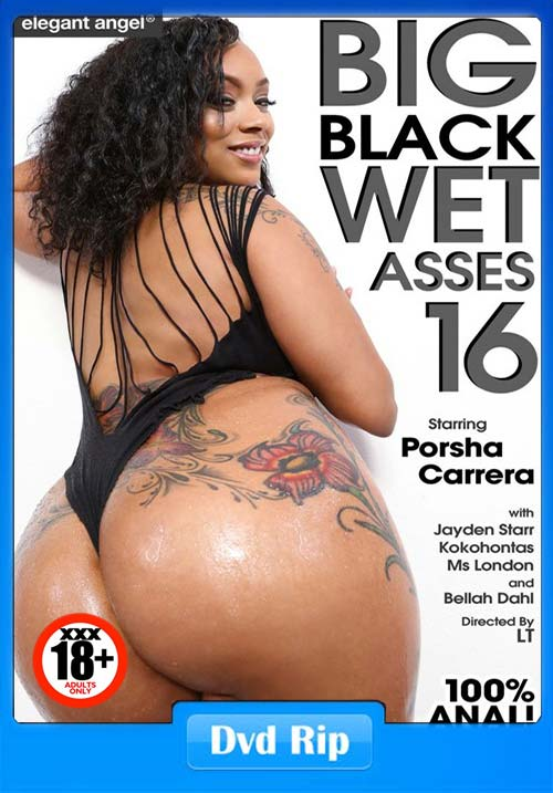 [18+] Big Black Wet Asses 16 XXX DVDRip XXX DVDRip x264   480p 300MB   100MB HEVC