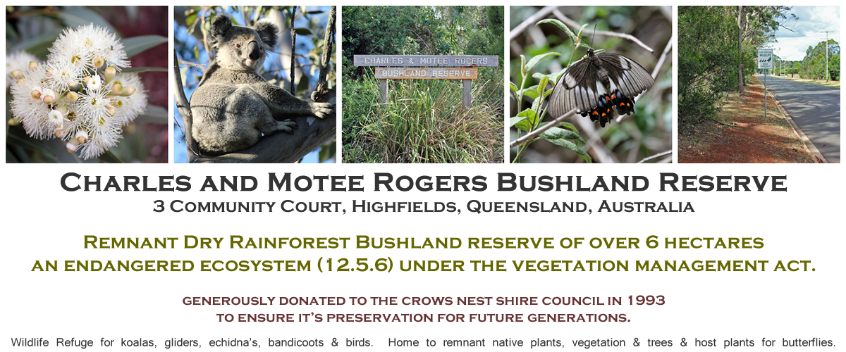 Charles and Motee Rogers Bushland Reserve
