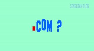 Perlukah Blog Pribadi Ganti Domain Ke TLD ?