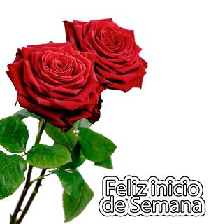 rosas rojas Feliz Inicio de Semana