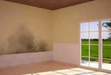 Tips Agar Dinding Rumah Tidak Lembab