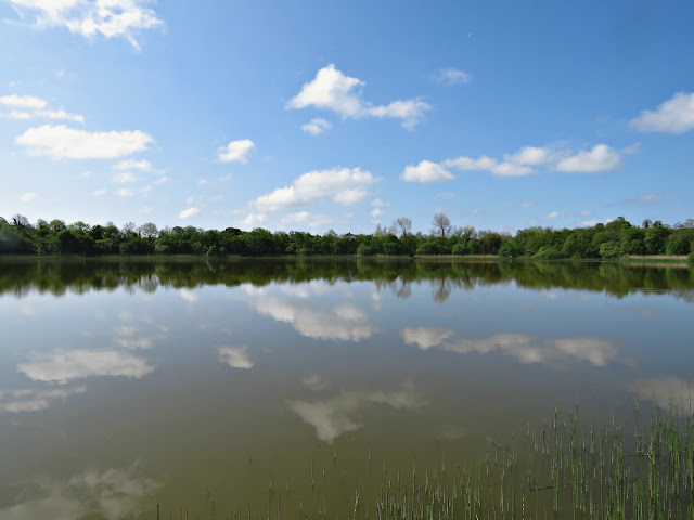White Lough, County Tyrone