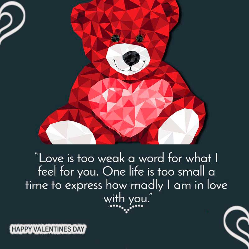 100 Valentines Day HD images and Messages