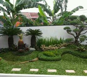 www.halamantaman.com jual pohon sikas