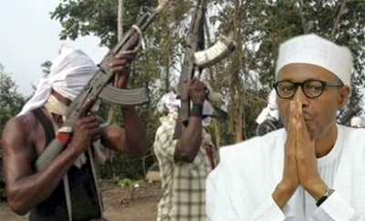 Why negotiations with militants have not started - FG