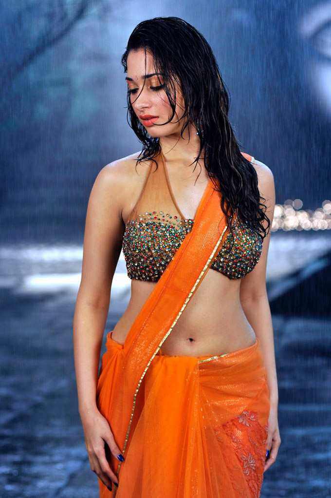 Actress In Wet Saree Hot Naval Show Pics-9682