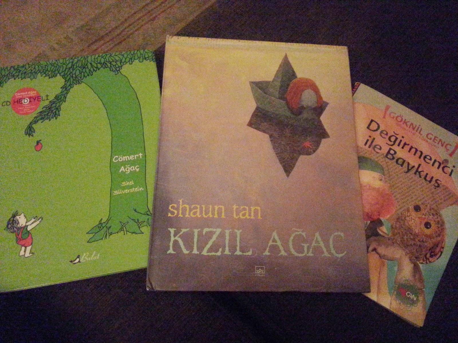 3-6 yaş çocuk kitapları