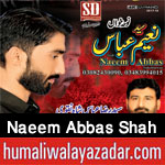 http://www.humaliwalayazadar.com/2017/10/syed-naeem-abbas-shah-nohay-2018.html
