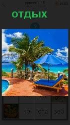 берег моря на котором стоят шезлонги и пальма, все для отдыха
