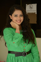 Geethanjali in Green Dress at Mixture Potlam Movie Pressmeet March 2017 048.JPG