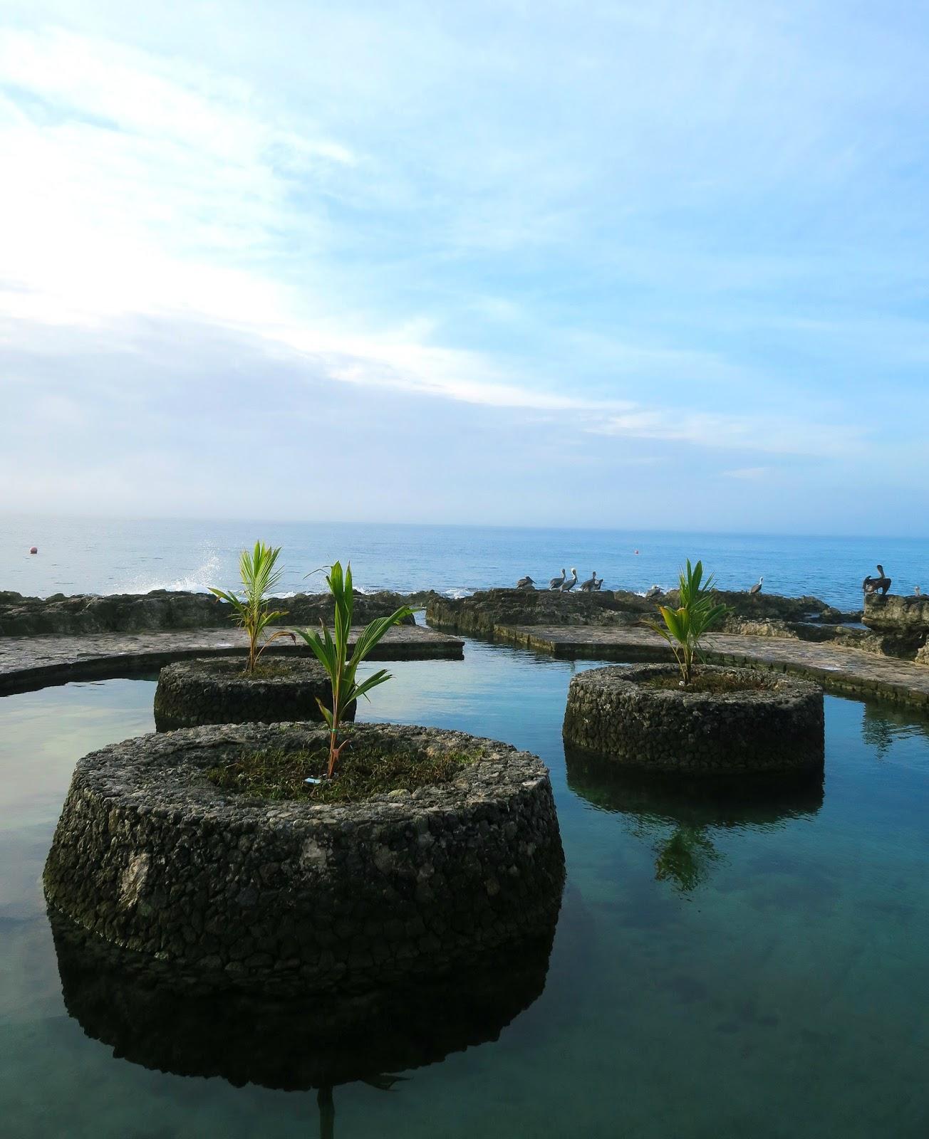 Sea pool at the Occidental resort