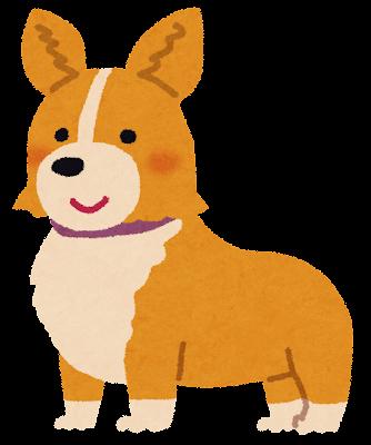 コーギーのイラスト(犬)
