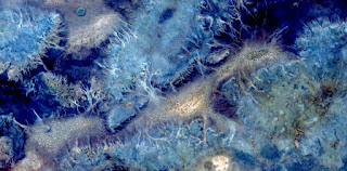 stone allegory Desert seabed,abstract landscapes of deserts   ,Abstract Naturalism,abstract photography deserts of Africa from the air,abstract surrealism,mirage in desert,abstract expressionism,