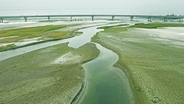 শুকিয়ে যাচ্ছে নদী-নালাঃ পটিয়াসহ চট্টগ্রামের বিস্তীর্ণ এলাকায় সেচ সংকটে কৃষকরা