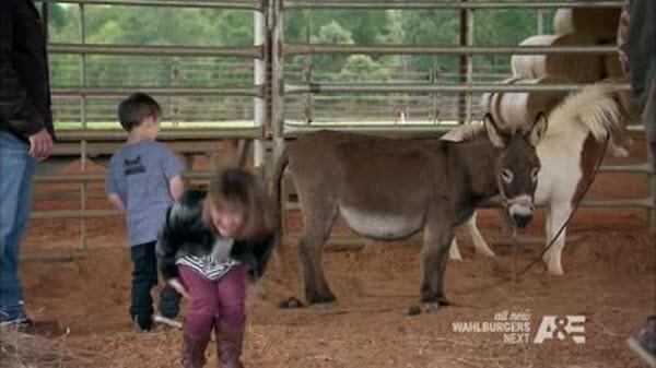 Duck Dynasty - Season 5 Episode 09: The Big LeCOWski