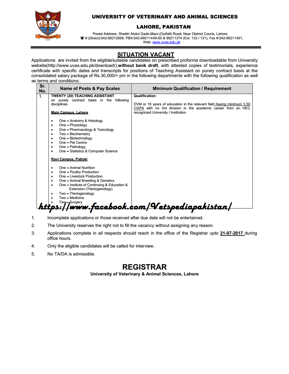 LATEST JOBS: 20 DVM required for Posts of Teaching Assistant in ...