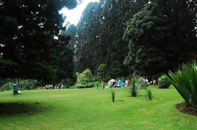 Taman Cibodas Cipanas Cianjur