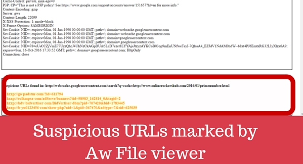 Suspicious URLs marked by Aw Snap Info File Viewer