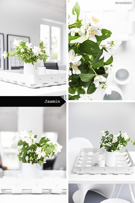 Jasmin in der Vase.