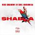 Download Wizkid ft Chris Brown, Trey Songz, French Montana - 'Shabba'