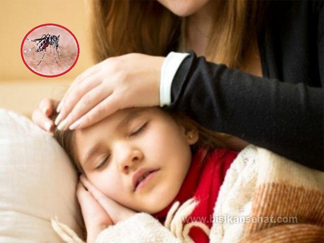 13 Cara Mengetahui Gejala Awal Demam Berdarah - www.bisikansehat.com