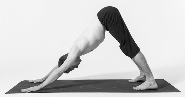 Adho Mukha Svanasana Yoga Steps and Benefits