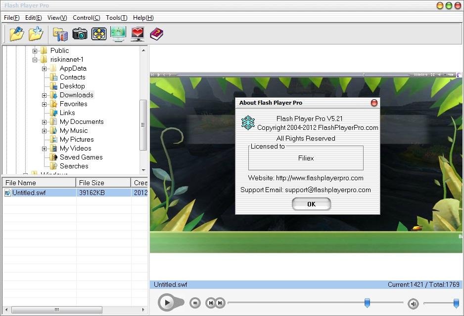 Flash Player Neu