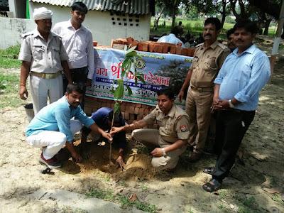 Save Trees With Tree Plantation Uttar Pradesh