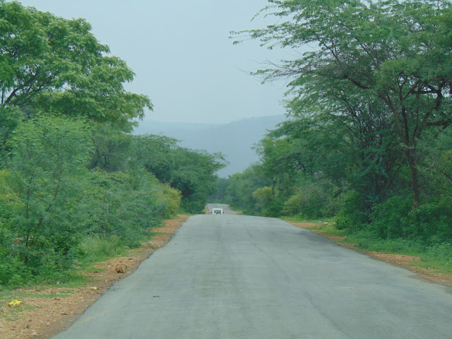 sariska alwar road
