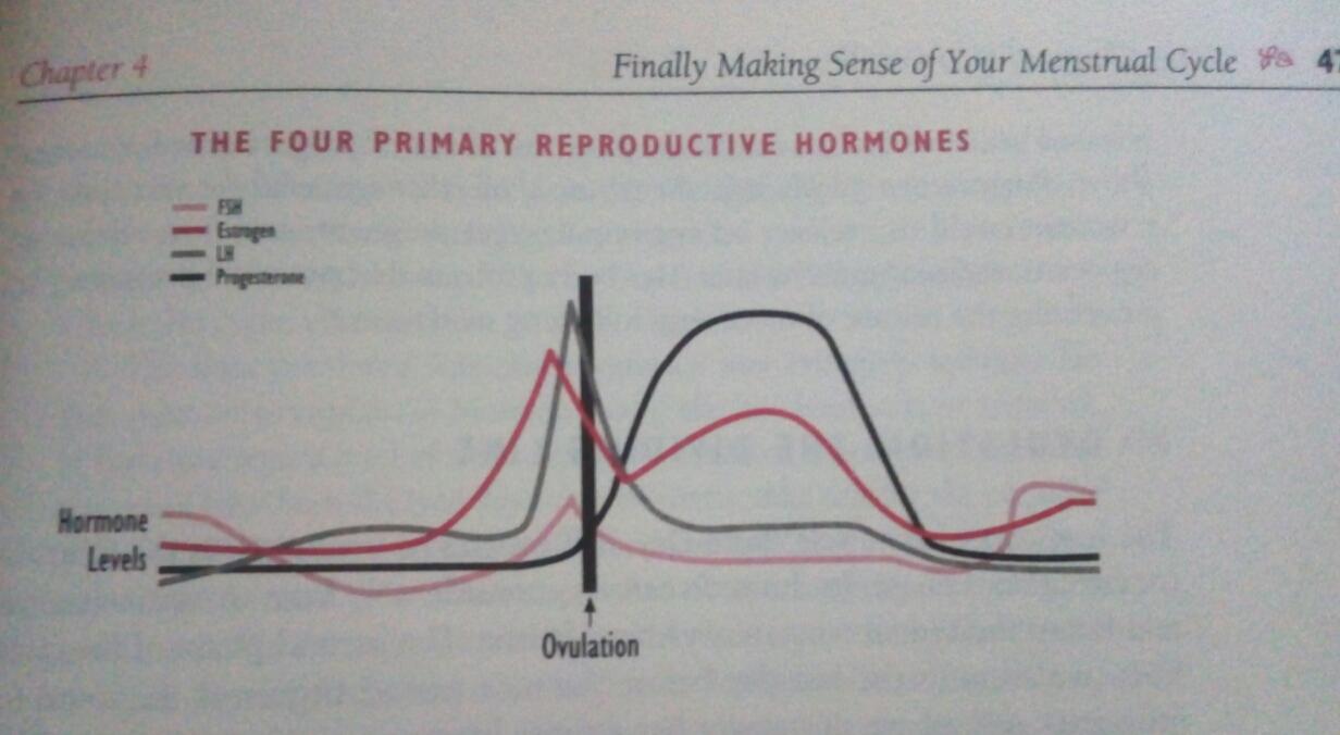 1a330043fac Enne ovulatsiooni kõikumine 36,1 kuni 36,5 kraadi, pärast ovulatsiooni  umbes 36,5 (võbeledes 6) ja kõrgem. Temperatuur jääb kõrgemaks 12-16  päevaks kuni ...