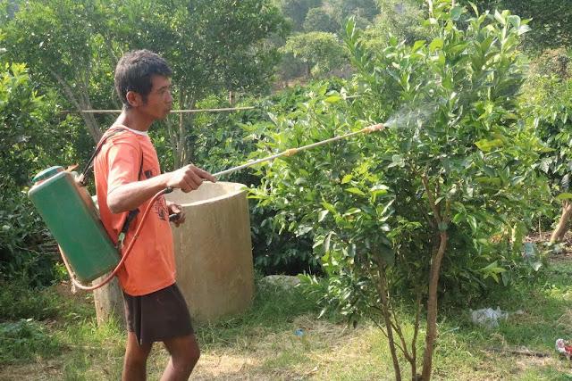 အိခ်ယ္ရီေအာင္ (Myanmar Now) ● ကူညီေဖးမမႈ လိုအပ္ေနသည့္ ရြာငံလိေမၼာ္