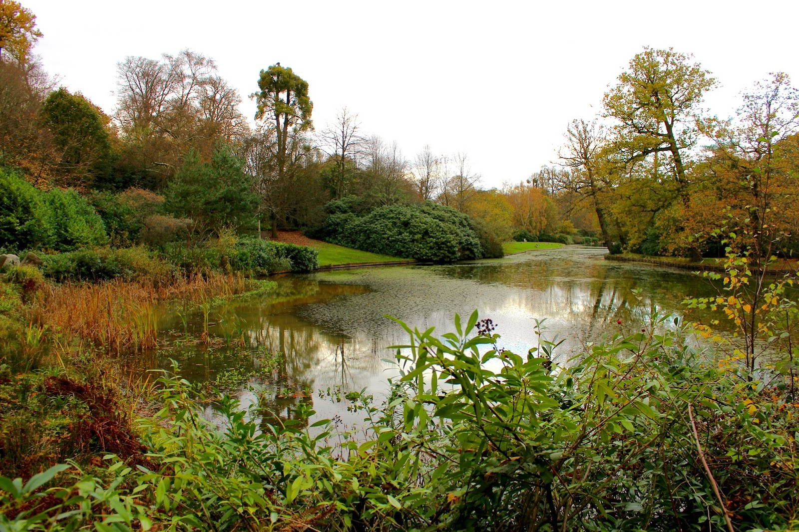 Claremont Landscape Garden Blog Review