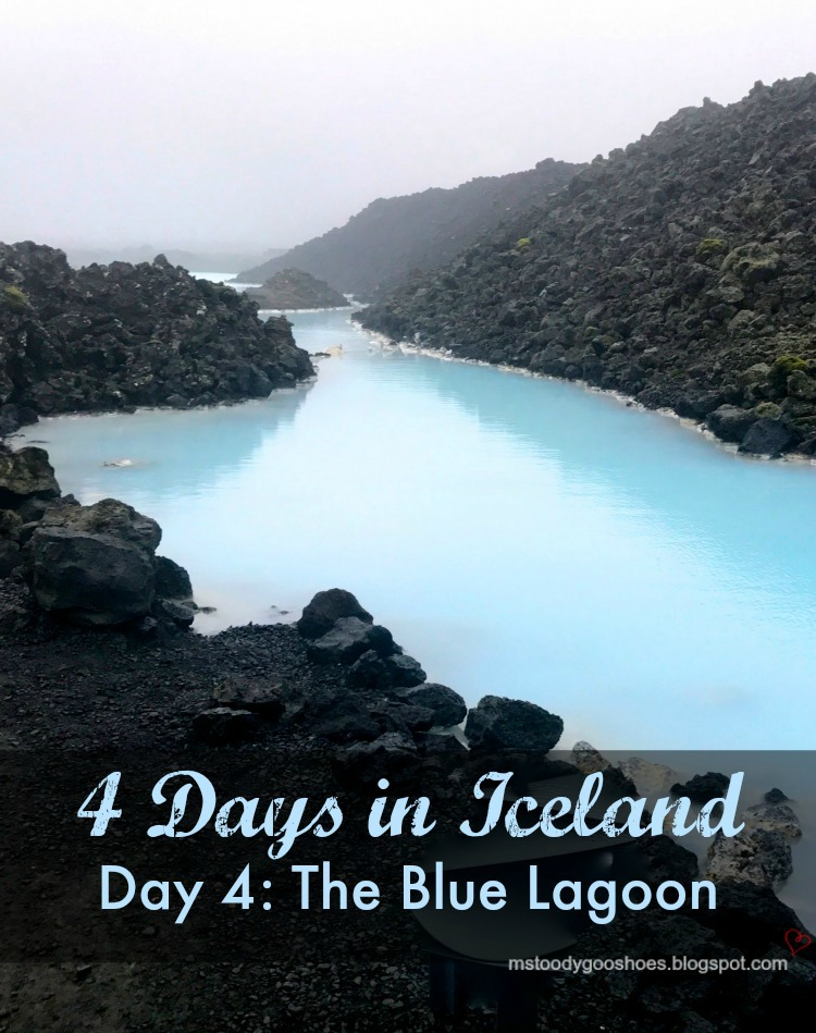 Four Days In Iceland - Day 4: The Blue Lagoon | Ms. Toody Goo Shoes