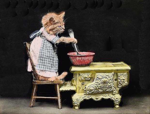 Cooking Cat Caturday Clip Art Public Domain