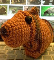 http://www.ravelry.com/patterns/library/sara-the-capybara