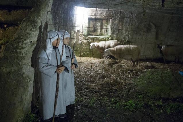 Pastorelli e pecore nel presepe vivente