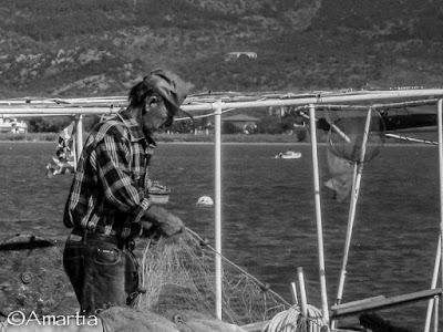 Pêcheur, Koilada, Peloponnèse