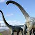 Scientists Discover Giant herbivorous, Long-Necked Dinosaur Species In Australia