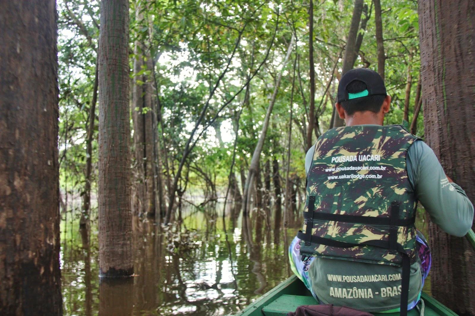 Passei de canoa pelo Rio Japurá.