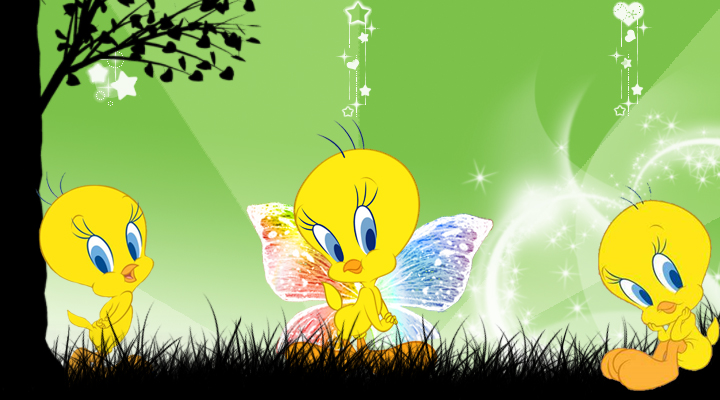 All Products Info: baby tweety wallpaper
