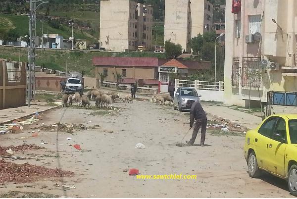 النفايات تغرق حي 18 فيفري ببلدية الزبوجة
