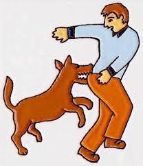 بعض الأمراض التي تصيب الحيوانات الأهلية - داء الكلب