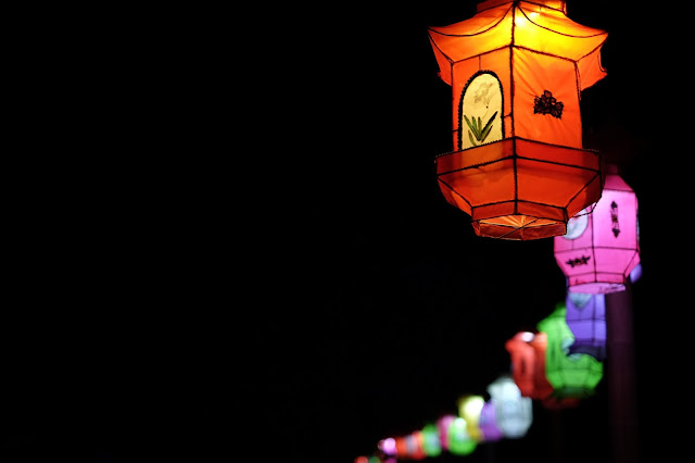 新年快乐     Happy New Year .....