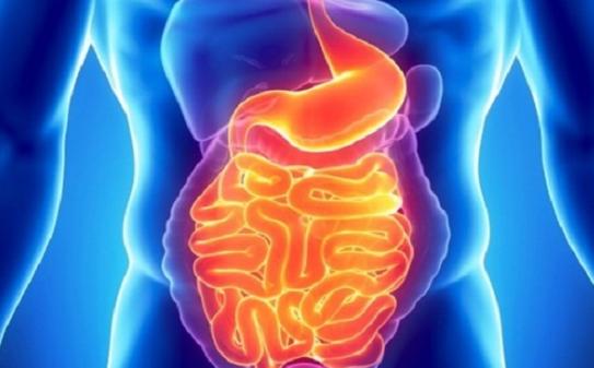 Tips Dan Cara Mengeluarkan Toksin Dari Badan