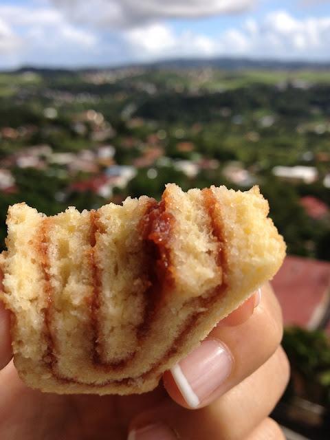 biscuit roulé, bûche, gâteau, confiture, goyave