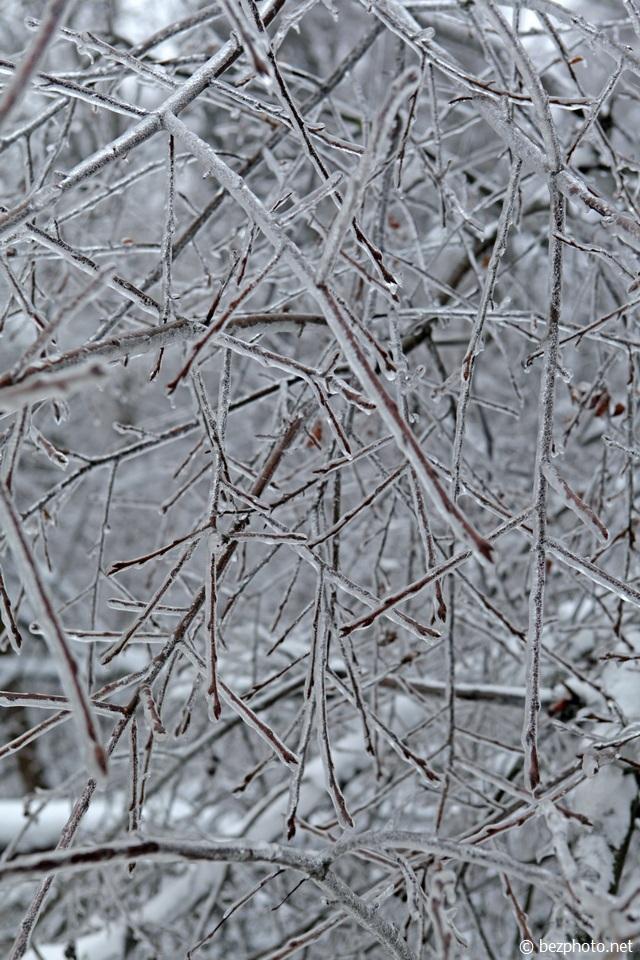 ледяной дождь в москве фото